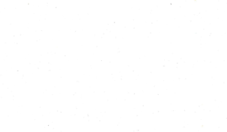 white-background-image-8