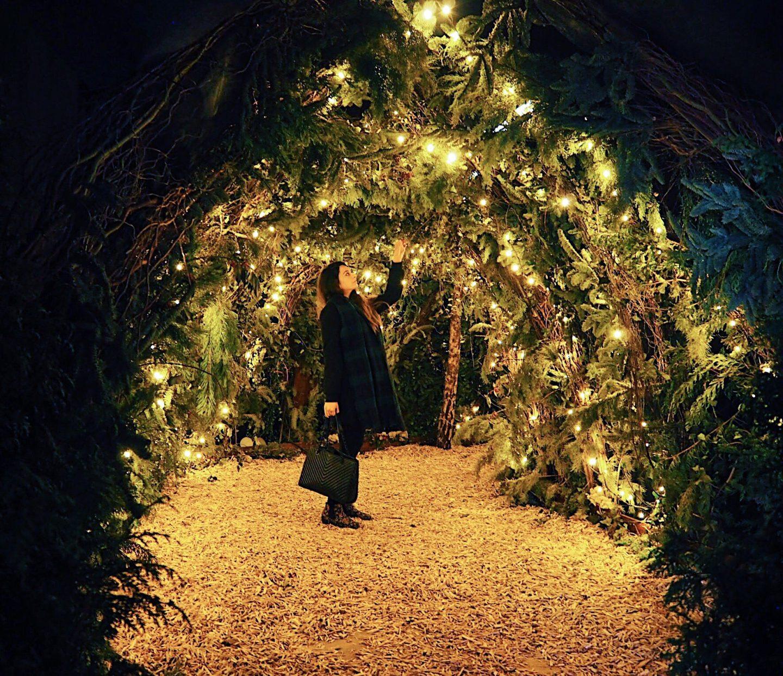 Backyard Cinema Winter Garden Review